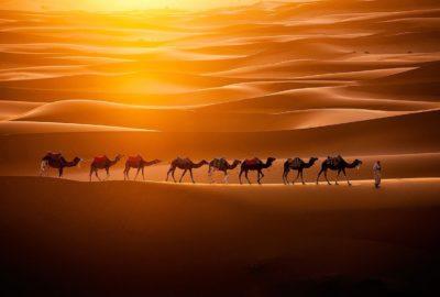 Afella Le Top Du Voyage Organise Au Maroc Partez Des 850 Dh